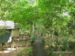 Kalimantan Tengah, outdoor adventure, bike ride, Dayak Ngaju, Indonesia, jungle homestay, Kahayan River, Lais Lake, nature, Obyek wisata, Palangka Raya, Pulang Pisau, Garden Eden,