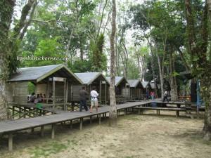 adventure, bike ride, Central Kalimantan Tengah, crocodile, Dayak Ngaju, eagle, family picnic, hornbill, Indonesia, Sungai Kahayan River, monkey, Obyek wisata, outdoor,