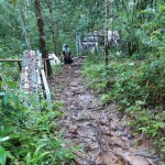 adventure, authentic, bamboo bridge, Bidayuh, Borneo Heights Highlands, dayak, indigenous, Kuching, Malaysia, native, nature, orang asal asli, outdoor, Padawan, rural, traditional, trekking, tribal, tribe, Kampung Nyegol,
