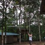 authentic kampung, Bau, Dayak Bidayuh, forest, indigenous, Kuching, Malaysia, native, nature, Non Government Organization, orang asal asli, outdoor, paradise, retreat centre, rural, traditional, tribal, tribe, bamboo hanging bridge