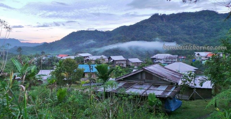 adventure, authentic, bamboo bridge, Bidayuh, Borneo Heights Highlands, dayak, indigenous, Kuching, Malaysia, native, nature, orang asal asli, outdoor, Padawan, rural, traditional, trekking, tribal, tribe,