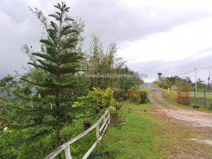 authentic village, Bundu Paka Lodge, fishing, hiking, homestay, indigenous dayak, Kadazan Dusun, Kadamaian River, Mount Kinabalu, native, nature, outdoors, Tamparuli, tribal, tribe, white water rafting, kayaking, Malaysia