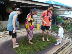 Bengoh Dam, community service, black pepper, authentic, indigenous, Kuching, Malaysia, native, nature, traditional, outdoors, Padawan, rural, seva, hiking, tribal, tribe, Kampung Ayun,