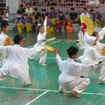 Chinese culture, chinese martial arts, Chinese New Year, competition, festival, Kuching event, Federation, sports, traditional, 舞狮, Dragon dance,