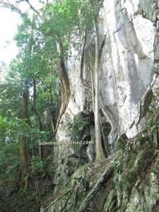 adventure, exploration destination, Kuching event, Malaysia, Nature Reserve, outdoors, Pesta Fairy Festival, rock climbers, rock climbing, rock on 2, Sports, stalactites, stalagmites, tourist attraction, travel guide, Wind Cave, 仙洞,