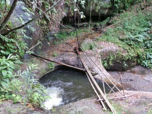 authentic, Dayak Bidayuh, biodiversity, flora, hiking, indigenous, native, Gawai Nyaruok, outdoor, Padawan, paddy harvest festival, rainforest, Kuching, traditional, trekking, tribal, tribe, village,