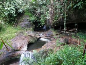 authentic, Bidayuh, biodiversity, Gawai nyaruok, hiking, indigenous, Kampung, land dayak, Malaysia, native, nature, outdoor, Padawan, plants, rainforest, trekking, tribal, tribe,