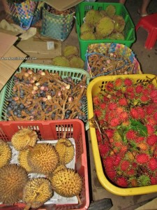 Betong, cannon, Durian Isu, Durian Pakan, exotic delicacy, Malaysia, mangoes, nature, Sarawak, traditional, jungle,