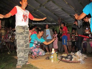 adventure, authentic, Bananggar waterfall, culture, Dusun Tauk, Ethnic, indigenous, West Barat, Kecamatan Air Besar, naik dango, native, paddy harvest festival, ritual, traditional, tribal, tribe, village,