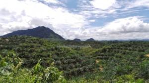 adventure, air terjun, authentic, Bananggar, dayak, Dusun Entuai, Ethnic Selako, indigenous, native, outdoor, Landak, tribal, tribe, village, Waterfall,