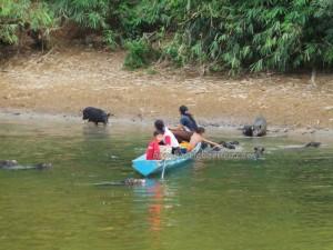 authentic, Dayak Bidayuh, Boat ride, catfish, culture, Desa Pala Pasang, Entikong, fresh water fishing, indigenous, Indonesia, Kampung Mangkau, native, outdoor, Soft shell turtles, tapah, tribal, tribe, village,
