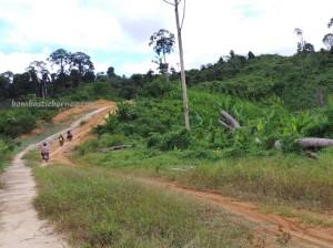 adventure, authentic, Borneo, dayak, Dusun Tauk, Indonesia, West Kalimantan Barat, native, nature, Obyek wisata, outdoor, Sungai Landak, tribal, tribe, village,