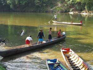 adventure, authentic, Land Dayak Bidayuh, Speed boat ride, Borneo, catfish, Desa Pala Pasang, fresh water fish, Indonesia, Kampung life, native, nature, outdoor, Sanggau, Soft shell turtles, tapah, tribal, tribe,