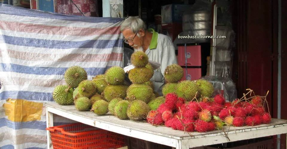 antique, Betong, Bunga Kantan, cannon, dabai, Durian Isu Pakan, jungle fruits, local olive, mangoes, nature, rambutan, wild ginger,