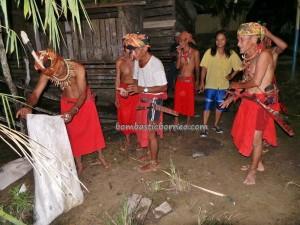 adat, authentic village, baruk, bengkayang event, Wisata budaya, culture, indigenous, West Kalimantan Barat, native, nyobeng Sebujit, gawai harvest festival, skull feeding, spiritual, thanksgiving, traditional, tribal, tribe,