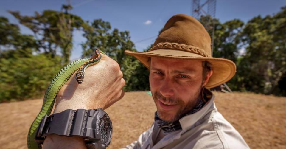 Kukuo Ra'laa, conservation centres, Borneo, British Broadcasting Corporation, Dayak Murut, flying snake, jungle, Lagud Sebrang, rainforest, Sabah Agriculture Park, Tenom, tourist attraction, ular kukuo, wildlife