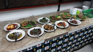 Exotic delicacy, authentic, Borneo, culture, Ethnic, fishing village, indigenous, Kabupaten, West Kalimantan Barat, Malay Sultanate, Obyek wisata, outdoor, Regency, Tourism, tourist attraction, traditional, travel,