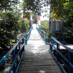 adventure, biodiverse ecosystem, Boat ride, Borneo, National park, green swamp vegetation, kapuas hulu, lake, Nature Reserve, Obyek wisata alam, orang utan, outdoor, proboscis monkey, Ramsar site, Tourism, tourist attraction, traditional, wildlife,