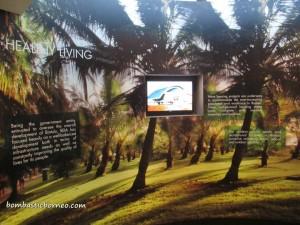 BDA, hydropower, economic, city, Samalaju Industrial Park, Sarawak Corridor of Renewable Energy, SCORE, Universiti Teknologi MARA