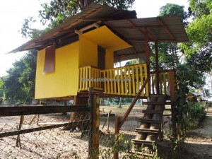accommodation, beachside, Borneo, lundu, malaysia, lodge, tree house, 三馬丹, 伦乐, 古晋住宿, 沙捞越, 農牧海濱渡假村, 马来西亚, tourism, tourist attraction, guide tips,