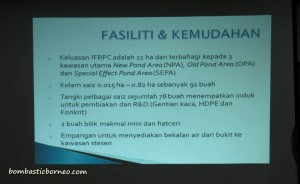 Design, development, fish breeder, fish farming, fresh water fish, IDEAS, Innovation, Invention, empurau, Sarawak, Serian, UITM, Universiti Teknologi MARA, 忘不了鱼
