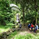 authentic, Borneo Highlands, dayak bidayuh, hashers, homestay, indigenous, jungle trekking, Kuching, malaysia, native, orang asal, Padawan, rainforest, sunrise, tour guide, outdoor, tribal, tribe,