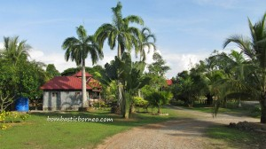 Borneo, accommodation, malaysia, Old airport, Pasar Malam, Pasar Utama, Tourism, town, wet market