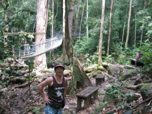 adventure, air terjun, gully, Gunung Santubong, hiking, jungle, malaysia, nature, outdoors, Santubong National Park, Tourism, tourist attraction, travel guide, trekking, Waterfall,