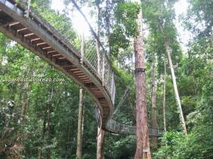 adventure, air terjun, gully, Gunung Santubong, hiking, jungle, malaysia, nature, outdoors, Santubong National Park, Tourism, tourist attraction, travel guide, trekking, Waterfall, Puteri,