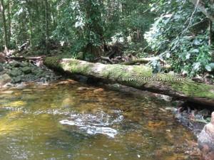 adventure, air terjun, Borneo, gully, Gunung Santubong, hiking, jungle, nature, outdoors, rainforest, Tourism, tourist attraction, travel guide, trekking, Waterfall, Puteri,