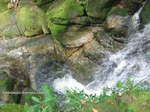 adventure, air terjun, gully, Gunung Santubong, jungle, Kuching, nature, outdoors, rainforest, Santubong National Park, Tourism, tourist attraction, travel guide, trekking,