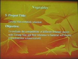 agro biotechnology, food technology, indigenous vegetables, Innovation, Invention, organic, pest management, Pusat Penyelidikan Pertanian Semongok, UITM, Universiti Teknologi MARA, Malaysia,