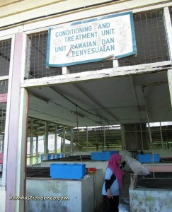 Design, development, fish breeder, fish farming, fresh water, IDEAS, Innovation, Invention, malaysia, research center, Serian, UITM, Universiti Teknologi MARA, 忘不了鱼