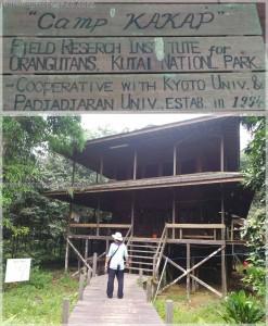 adventure, authentic, Desa Kabo Jaya, ecotourism, ecowisata, hiking, indonesia, Kutai National park, nature, outdoors, primary jungle, rainforest, Sangatta, taman nasional, Tourism, tourist attraction, trekking, wildlife
