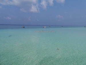 Berau, Borneo, Derawan Archipelago, dive center, east kalimantan timur, green sea turtle, marine life, nature, Obyek wisata, outdoors, pasir putih, Sandy white beaches, Tourism, tourist attraction, travel guide, underwater, village
