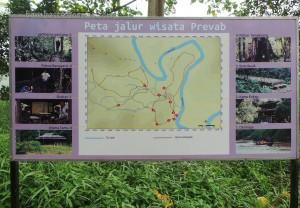 adventure, authentic, Desa Kabo Jaya, east kutai, ecotourism, hiking, indonesia, Kutai National park, nature, Obyek wisata, outdoors, primary jungle, rainforest, Sangatta, taman nasional, Tourism, tourist attraction, trekking,