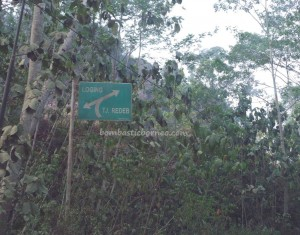 adventure, east kalimantan, indigenous, indonesia, native, nature, Obyek wisata, suku dayak, Tourism, guide, tribal, tribe, wisata alam,