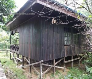 adventure, Borneo, Desa Kabo Jaya, ecotourism, ecowisata, kalimantan timur, nature, Obyek wisata, outdoors, prevab, primary jungle, rainforest, Sangatta, taman nasional kutai, tourist attraction, trekking, wildlife