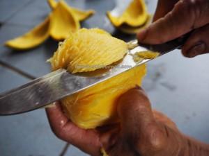 Anacardiaceae, Asam embang, Bambangan, buah buahan, Buah Eksotik, Buah Mawang, kalimantan, malaysia, mangga, Mangifera Pajang Kostermans, mango, Sabah, tropical, wild fruits, kordial juice,