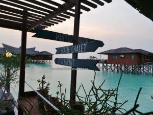 accommodation. Berau, Borneo, Derawan Archipelago, dive center, diving spot, green sea turtle, homestay, Paradise Island, marine life, nature, Obyek wisata, outdoors, Sandy white, Tourism, tourist attraction, travel guide, underwater,