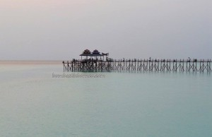Borneo, Berau, Derawan Archipelago, dive center, diving site, chalets, homestay, marine life, nature, Obyek wisata, pasir putih, Sandy white beaches, Tourism, tourist attraction, travel guide, accommodation,