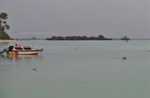 Derawan Archipelago, dive center, diving spot, island, chalets, accommodation, marine life, nature, Obyek wisata, pasir putih, Sandy white beaches, Tourism, tourist attraction, travel guide,