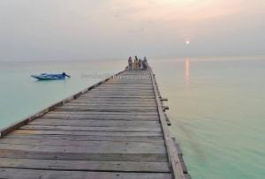 Berau, Borneo, Derawan Archipelago, dive center, diving spot, homestay, Paradise Island Resort, marine life, nature, pasir putih, Sandy white beaches, Tourism, tourist attraction, travel guide, village