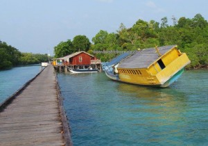 Berau, Borneo, Derawan Archipelago, dive center, diving spot, homestay, Paradise Island Resort, marine life, nature, pasir putih, Sandy white beaches, Tourism, tourist attraction, travel guide, village