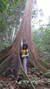 adventure, east kalimantan, ecowisata, hiking, Borneo, Kutai National park, nature, Obyek wisata, orang utan, outdoors, prevab, primary jungle, rainforest, Tourism, tourist attraction, trekking, wild plant, wildlife