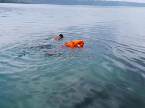beach, Borneo, brackish lake, Derawan Archipelago, diving spot, east kalimantan timur, hidden paradise, Pulau, marine life, Nature Reserve, Obyek wisata, stingless jellyfish, Tourism, tourist attraction, travel guide, underwater, World Heritage
