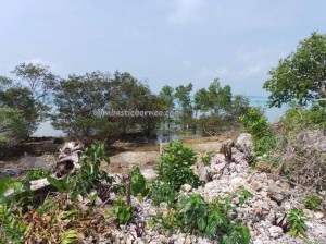 tourism, adventure, Berau, Indonesia, Derawan Archipelago, diving, Bajau, hidden paradise, indigenous, Kampung Teluk Alulu, nature, Obyek wisata, outdoors, island, beaches, Suku Bajo, travel guide