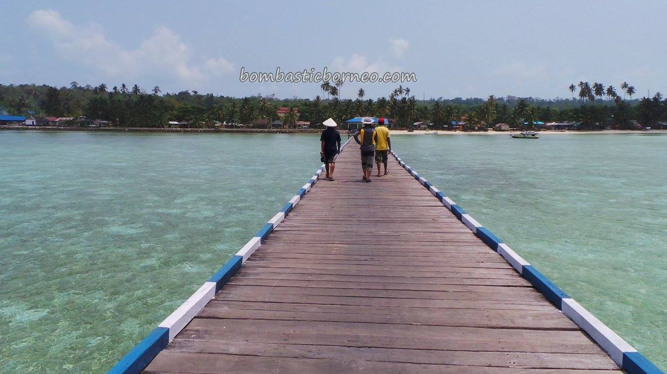 adventure, authentic, Indigenous Bajau, beach, Berau, Kampung Teluk Harapan, diving, hidden paradise, homestay, indonesia, nature, Obyek wisata, Pulau, Suku Bajo, Tourism, travel guide, tribe, vacation