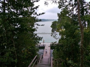 adventure, Borneo, Derawan Archipelago, diving spot, hidden paradise, indonesia, Pulau, mangrove forest, Maratua, marine life, Nature Reserve, Obyek wisata, outdoors, snorkeling, tourism, travel guide, vacation, World Heritage