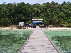 adventure, beach, brackish lake, diving spot, east kalimantan timur, hidden paradise, Island, mangrove forest, marine life, Nature Reserve, Obyek wisata, snorkeling, stingless jellyfish, Tourism, travel guide, vacation, World Heritage, tourist attraction,